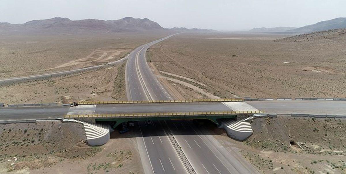 دستور وزیر راه برای رسیدن به رقم ۱۰هزار کیلومتر آزادراه