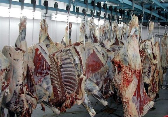 ۸۸درصد مردم از گوشت تنظیمبازاری بیبهره ماندهاند