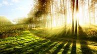 طبیعت چه نقشی در سلامتی شما دارد؟