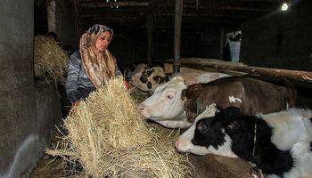 طرحهای اشتغالزایی زنان روستایی تا ۳۰۰میلیون تومان ضمانت میشود