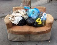 جولان زباله در کوچههای منطقه۷ تهران +عکس