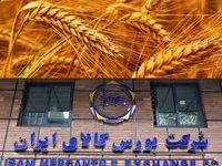 کاهش نرخ تامین مالی با اجرای سیاست قیمت تضمینی در بورس کالا