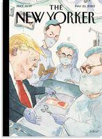 «توانایی ذاتی» پزشکی ترامپ موضوع جلد «نیویورکر» شد!