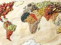 تأمین امنیت غذایی با پول نفت
