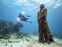 زیباییهای جزیره یوکاتان +تصاویر