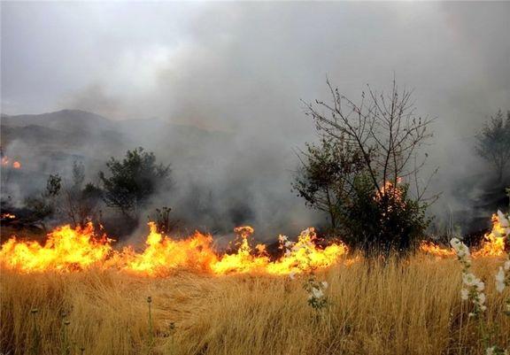آتشسوزی جنگلها و مراتع 60درصد کاهش یافت