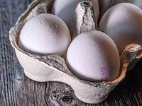 کاهش ۲۵۰۰تومانی قیمت تخم مرغ