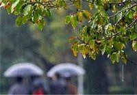 تداوم بارشها تا دوشنبه