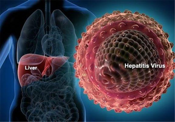 تمام راههای انتقال هپاتیت B از زبان یک متخصص