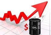 قیمت نفت بین ۷۰ تا ۸۰ دلار در نوسان میماند