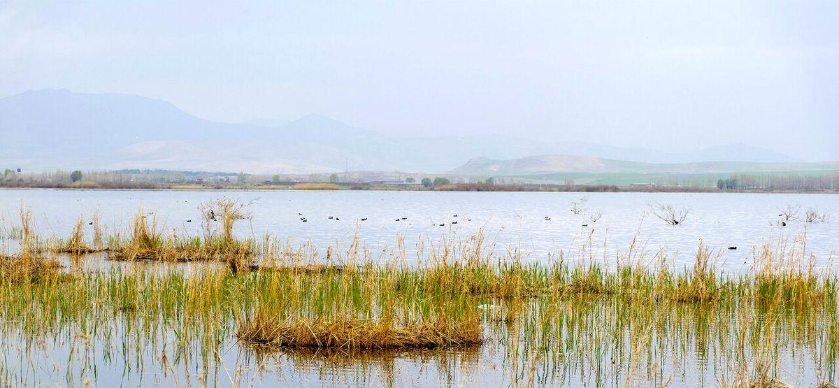 تالابها و رودخانهها خصوصی میشوند؟