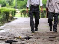 کاهش 21درصدی بارشها نسبت به سال گذشته