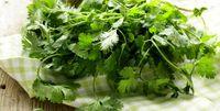 این سبزی خوشمزه ضد تشنج است