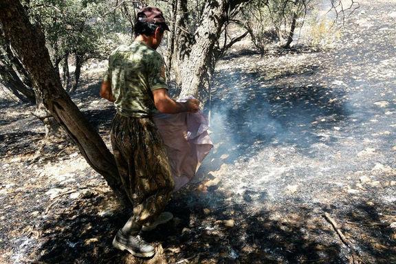 آتش سوزی در جنگلهای سروک بویراحمد