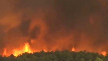 آتشسوزی گسترده در یونان +فیلم