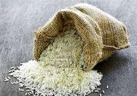 برنج ایرانی ۱۲هزار تومان؛ گرانتر نخرید