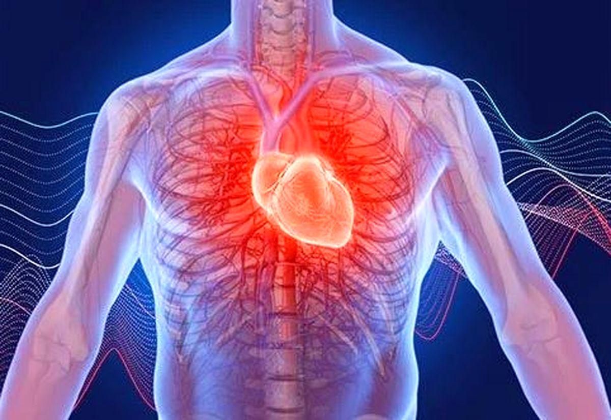 کاهش خطر بیماری قلبی با زندگی در مناطق سرسبز