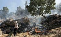 درخواست 10سال حبس برای عاملان آتشسوزی جنگلها و مراتع