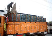 قیمت نوروزی پرتقال مازندران ۴۵هزار ریال تعیین شد