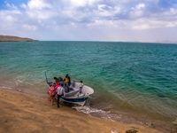 جزیره دلفینها در خلیجفارس +تصاویر