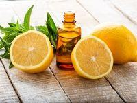 ارتباط لیمو ترش و تختخواب!