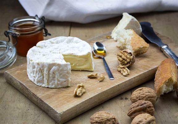 آیا پنیر اعتیادآور است؟