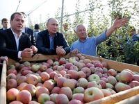 سیاستمداران مطرح در حال کشاورزی +تصاویر