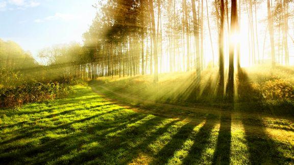 نور خورشید موجب کاهش فشارخون میشود