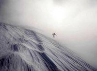 نقاشی باد بر روی برف +عکس