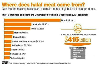 گوشتهای حلال از کجا میآیند؟ +اینفوگرافیک