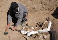 کشف ۵۸قلم اشیا تاریخی در مازندران
