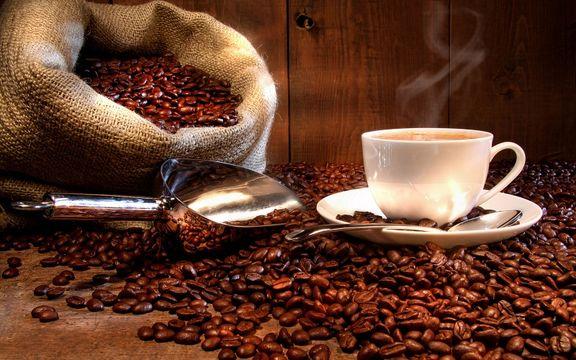 فرآورری قهوه سرمایه گذاری با آینده درخشان