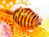 چگونه عسل تقلبی را بشناسیم؟/ وقتی یک ماده پرخاصیت تبدیل به سم میشود!