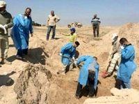 کشف گور دسته جمعی در کاخهای صدام