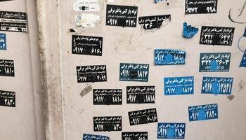 قانونشکنی در دل شیراز! +عکس