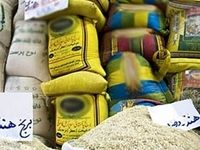 ۹۰۰ هزار تن برنج با ارز دولتی وارد کشور شد