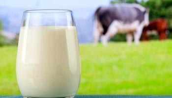 شیر بخورید تا سرطان نگیرید