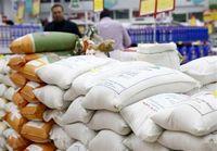 واردات برنج صرفه اقتصادی ندارد