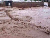 لرستان در محاصره آب/ سیلاب لرستان در حال رسیدن به خوزستان است