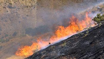 آتش سوزی در کوه آبیدر سنندج +تصاویر