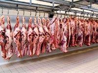 توقف توزیع گوشت تنظیم بازاری در میادین میوهوترهبار