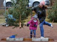 مسابقه پرتاپ درختان کریسمس در آلمان +تصاویر