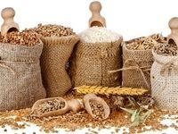 ثبت رکورد جدید و تاریخی تولید جهانی غلات/ تولید جهانی برنج در سال ۲۰۱۷به بالاترین میزان  میرسد