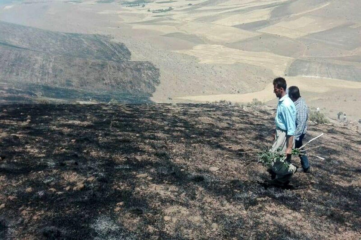 آتش سوزی در ارتفاعات مسجدسلیمان در حال پیشروی است