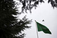 ناپدید شدن یک شاهزاده زن سعودی در شرایط مبهم +عکس