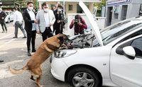 کشف مواد مخدر توسط سگهای مواد یاب +عکس