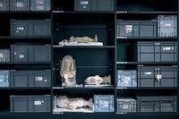 گزارشی درباره آثار ربودهشده از موزهها