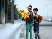رشد قارچگونه دستفروشان گل در سطح شهر/ گلهای خیابانی آلوده به آب فاضلاب هستند/ شهرداری گلفروشان خیابانی را منبع درآمد خود کرده است