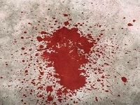 جنایت هولناک مرد بوکسور در شرق تهران