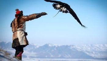 آموزش شکار با عقاب دستآموز در مغولستان +عکس